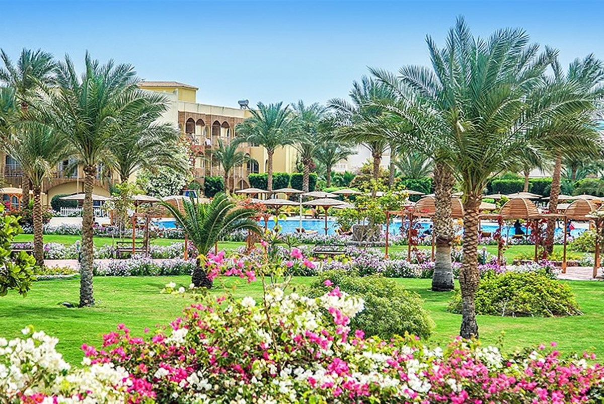 Hotel Desert Rose Resort - Egypt