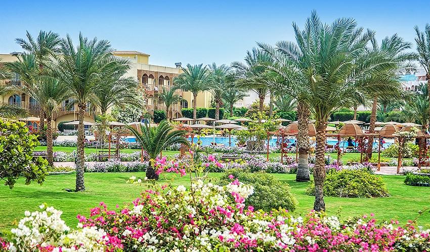 Hotel Desert Rose - Hurghada