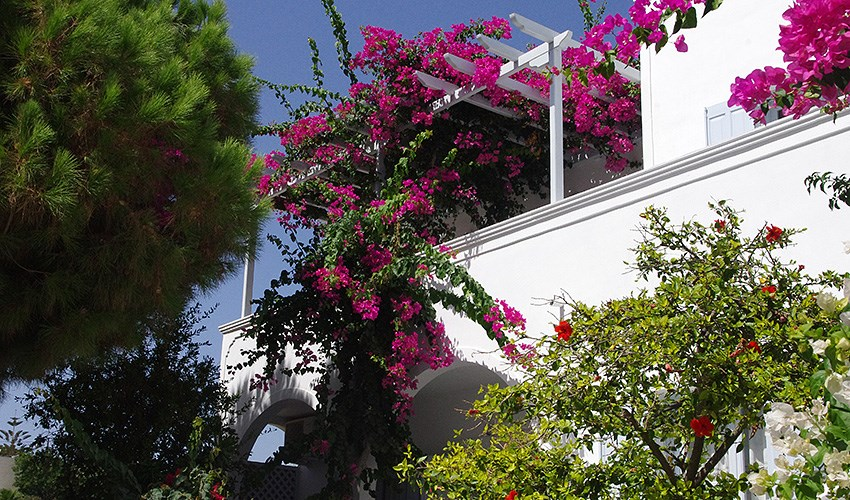 Studia Santorini Houses - Zakynthos