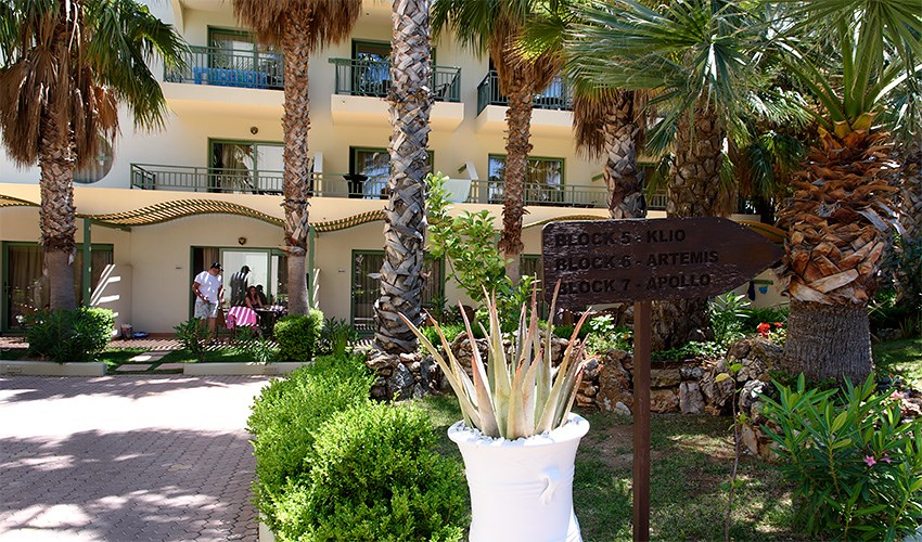 Hotel Star Beach Village